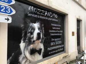 Lettrage vitrine Muzzamino