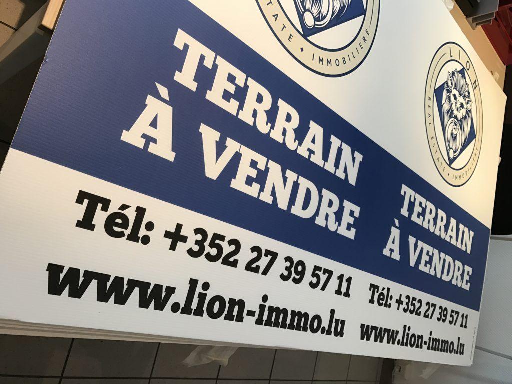 Panneau Immobilier - Lion Immo